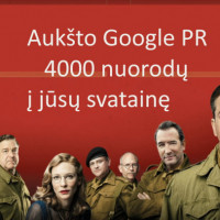 Profesionali jūsų skelbimo reklama internete!